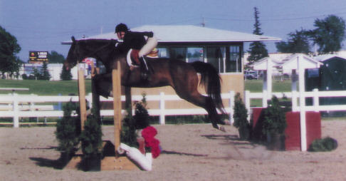 Kelly Parrish shows her horse High Society in a warm-up before Large Juniors