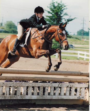 Simply Irresistible ridden by Anna Herath, 1999