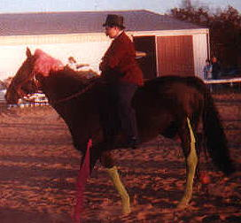 Rachel Rock as a man with her horse Jordan dressed as a woman, 1999