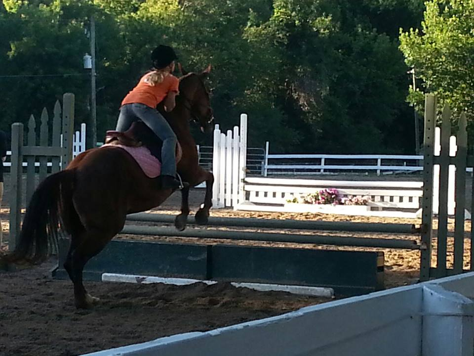 Madeline Schadler schooling at the Valley Park Horse Show, July 2013