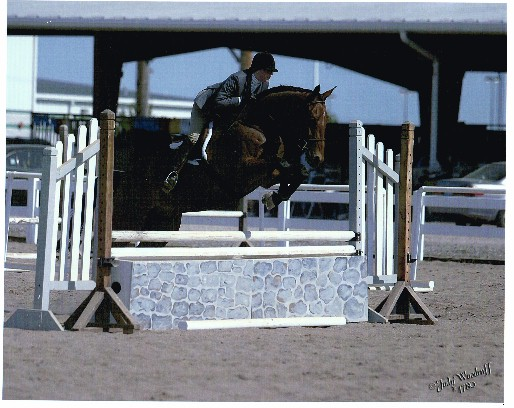 Al and Ann qualified for the Washington International Horse Show in 2003