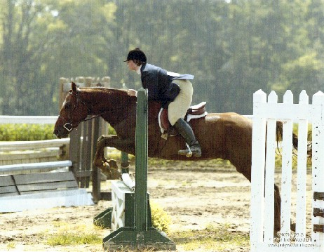 Art was Reserve High Point Hunter for MIHJA in 2004, despite having missed 1/4 of the shows when he was sold