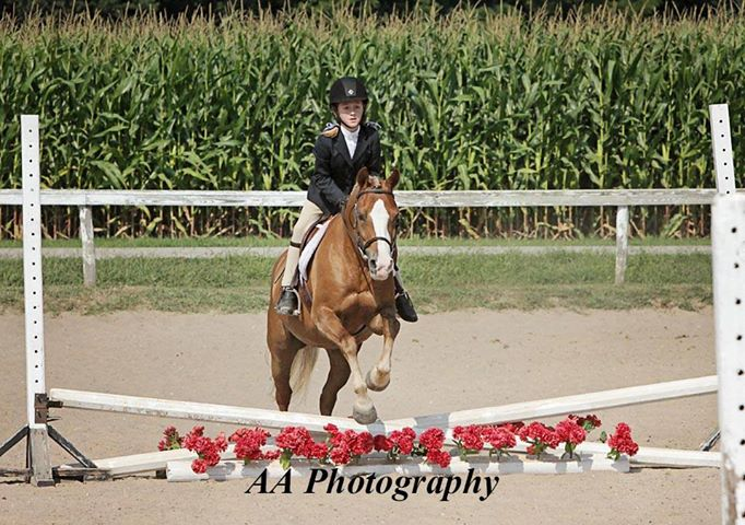 Hannah Reed showing in the Huntermark Fall Festival, August 2013
