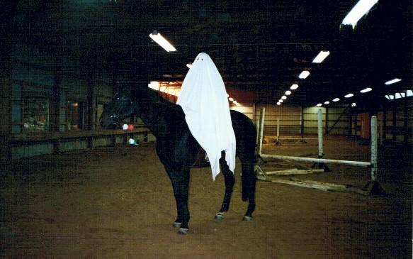 Rachel Rock as a ghost with Jordan as a haunted horse, 2001