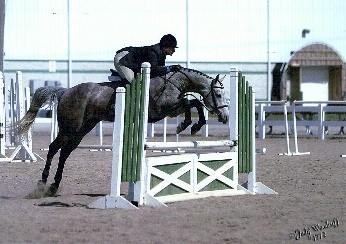 Holly is jumping so great here, she is practically jumping out of her skin!  What an athletic pony!
