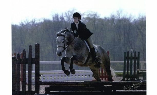 April 2003 with rider Laura Burgett