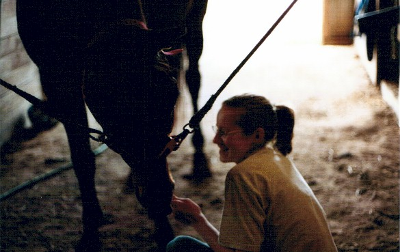 Laura in the south barn with Trent.  She has used strecthing exercises to teach him to bow