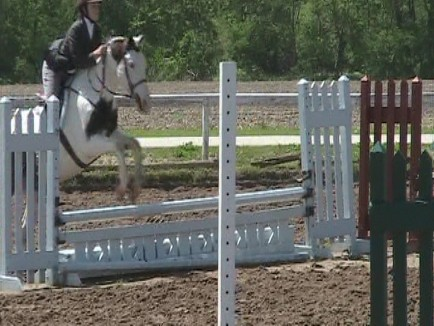 Monty and Maggie showing in the MIHJA Season Opener