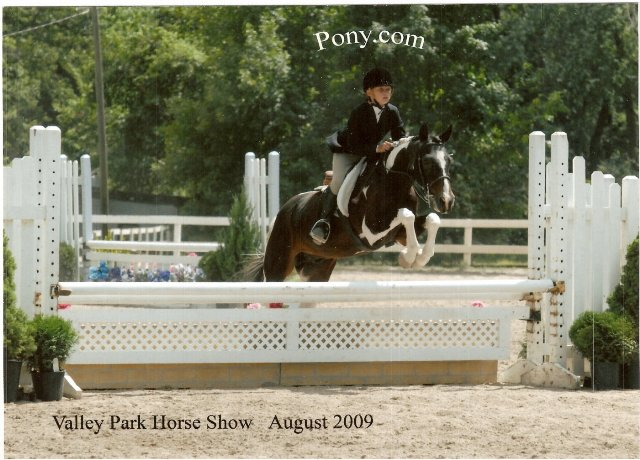 Savannah Chapman showed Joey in Green and Regular Large Pony