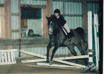 Dorothy the Beginner Horse in her first Winter Series