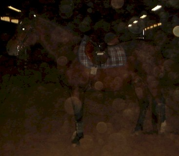 I apologize for the poor quality.  The overhead lights in the indoor arena are too far away to be picked up by the camera