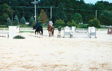 Ring 5 is the only ring at Lamplight where you can school over fences