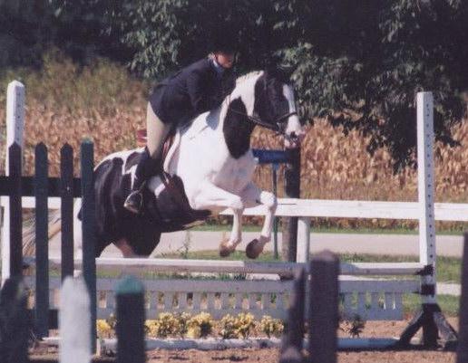 Ellen Reeder showing her horse State Of Grace