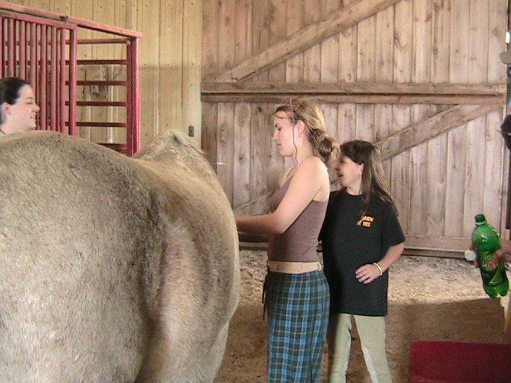 Allie Armetta braids while Megan Creamer-Foster and Gabrielle Armetta lend their support